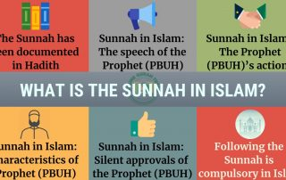 Importance and significance of the Sunnah in Islam